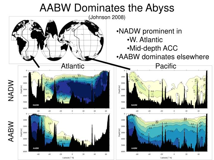 AABW Dominates the Abyss