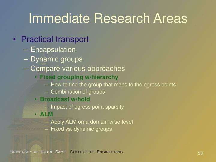 Immediate Research Areas