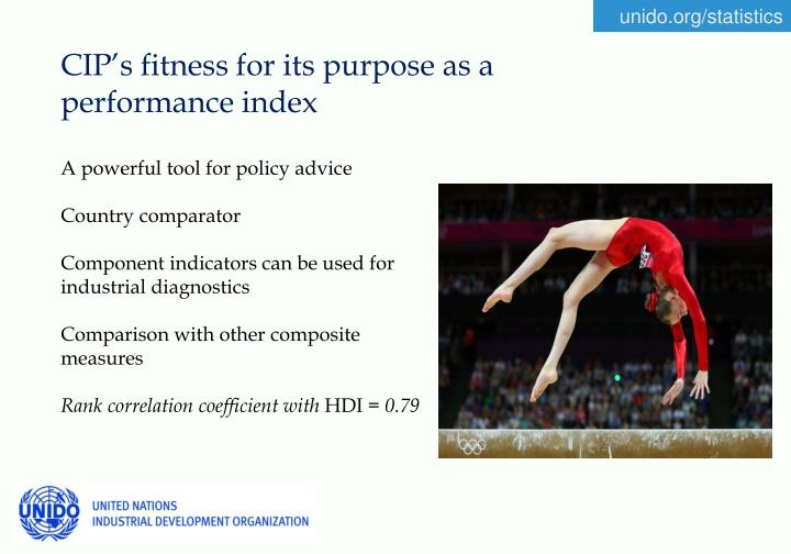 CIP's fitness for its purpose as a performance index