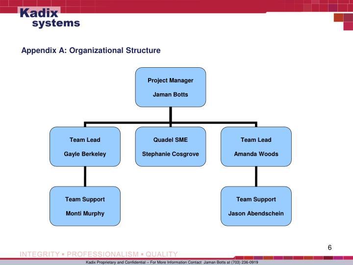Appendix A: Organizational Structure