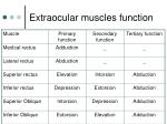 extraocular muscles function