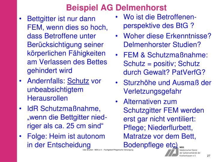 Beispiel AG Delmenhorst