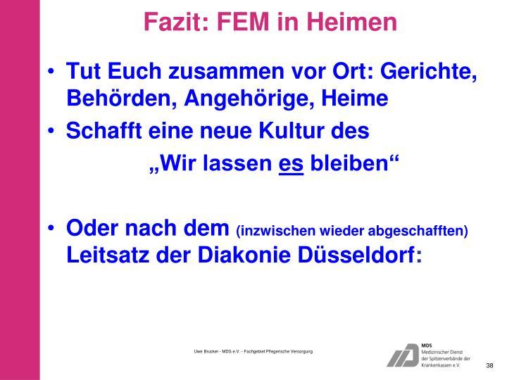 Fazit: FEM in Heimen