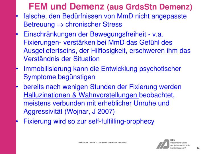 FEM und Demenz