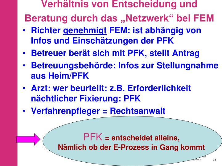 """Verhältnis von Entscheidung und Beratung durch das """"Netzwerk"""" bei FEM"""