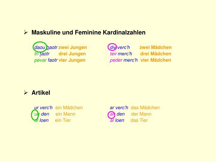 Maskuline und Feminine Kardinalzahlen
