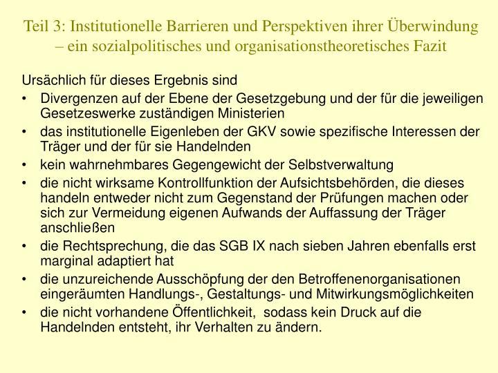 Teil 3: Institutionelle Barrieren und Perspektiven ihrer Überwindung – ein sozialpolitisches und organisationstheoretisches Fazit