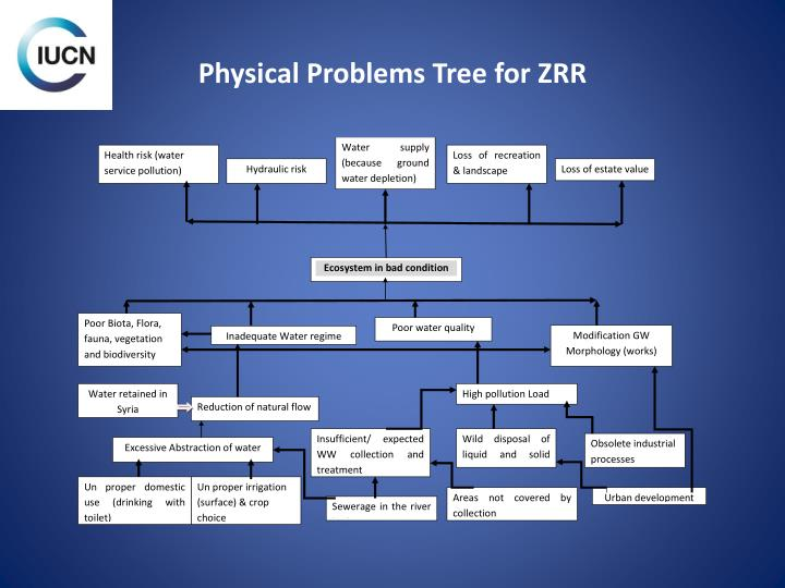 Physical Problems Tree for ZRR