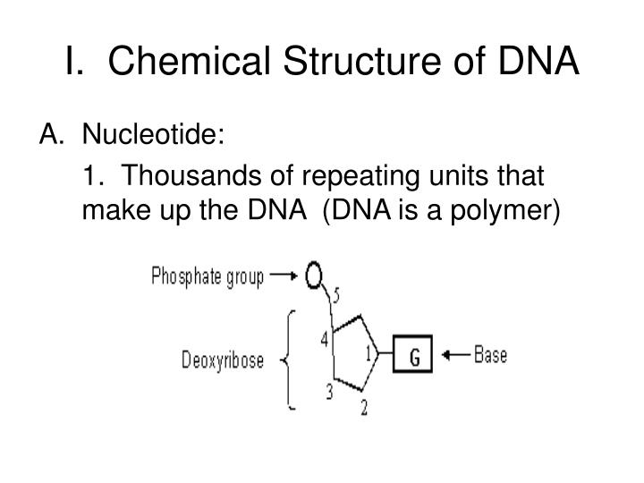I chemical structure of dna