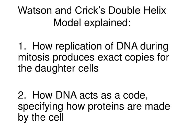 Watson and Crick's Double Helix Model explained: