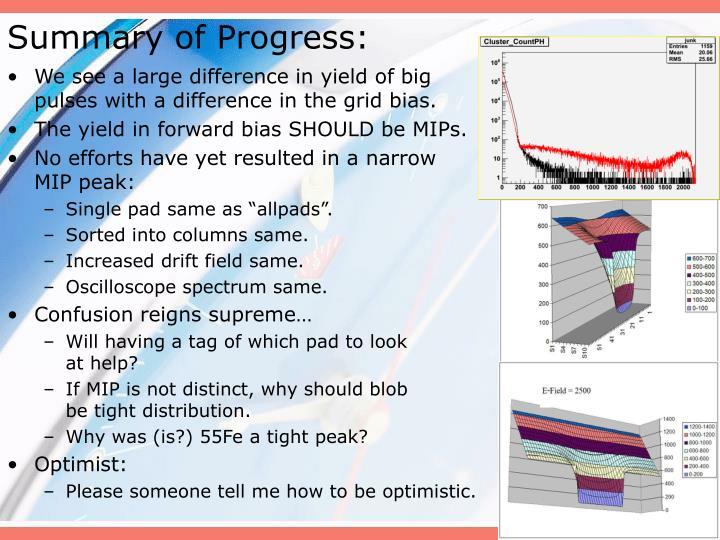 Summary of Progress: