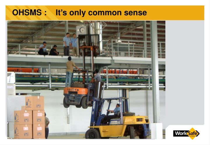 OHSMS :    It's only common sense
