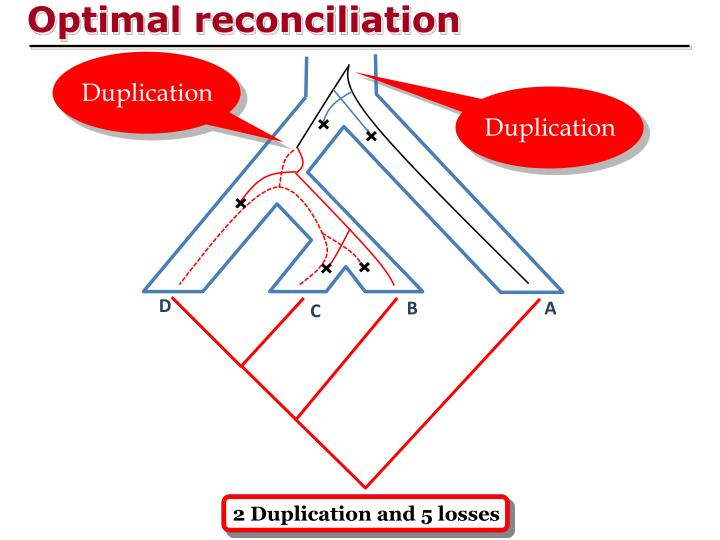 Optimal reconciliation