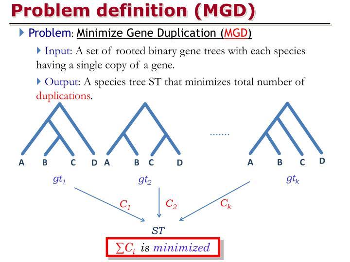Problem definition (MGD)
