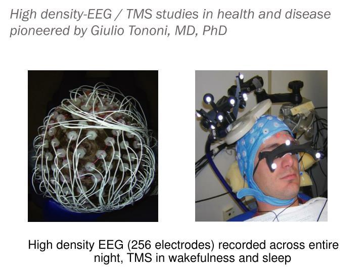 High density-EEG / TMS studies in health and disease pioneered by Giulio Tononi, MD, PhD