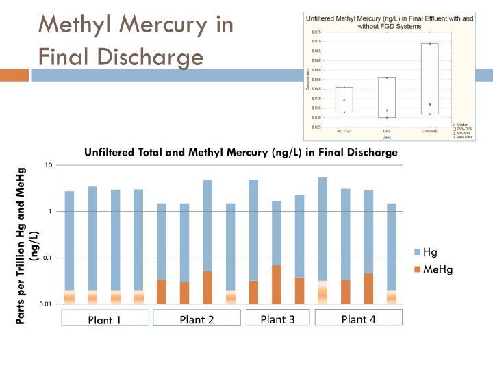 Methyl Mercury in
