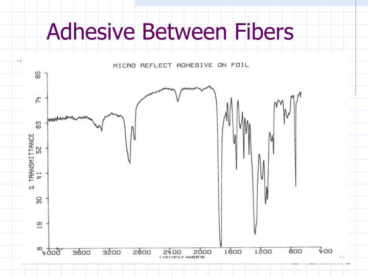 Adhesive Between Fibers
