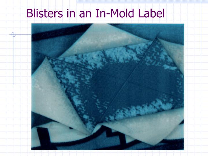 Blisters in an In-Mold Label