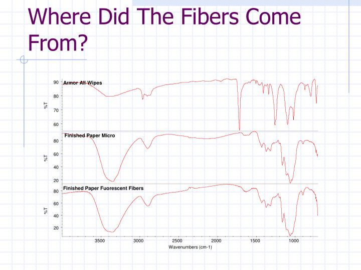 Where Did The Fibers Come From?