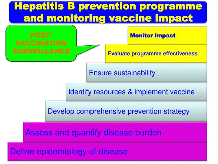 Hepatitis B prevention programme and monitoring vaccine impact