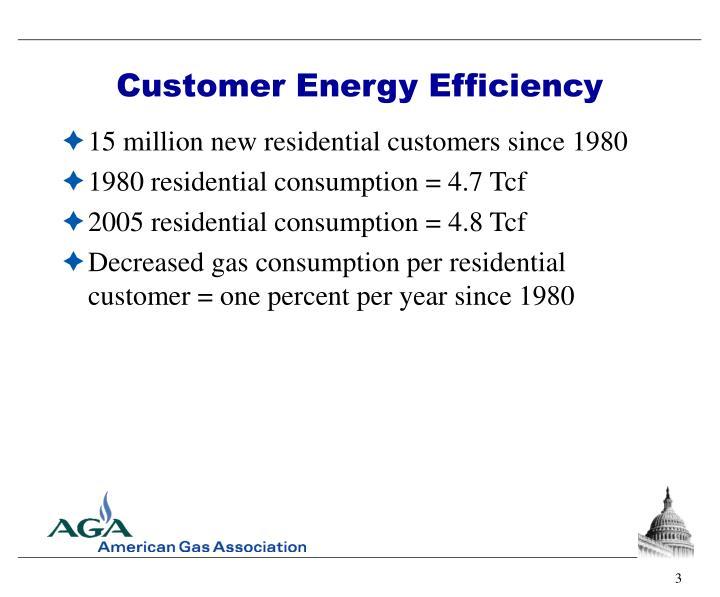 Customer Energy Efficiency