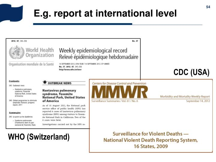 E.g. report at international level