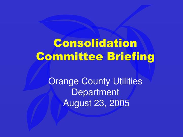 Consolidation Committee Briefing