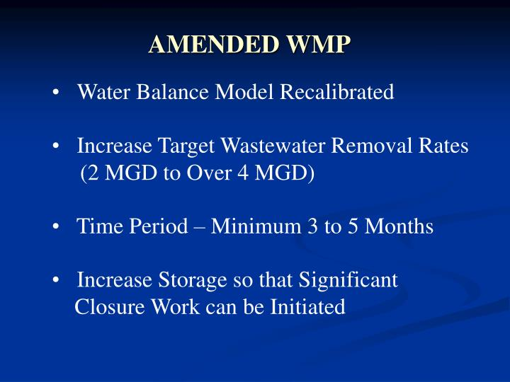AMENDED WMP