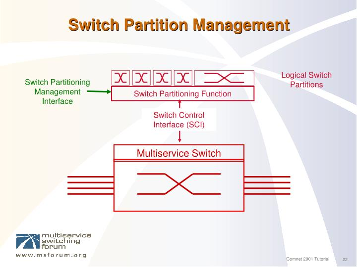 Switch Partitioning