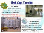 end cap toroids