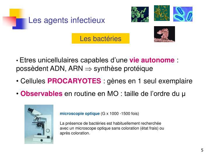 Les agents infectieux