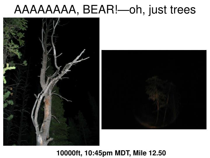 AAAAAAAA, BEAR!—oh, just trees