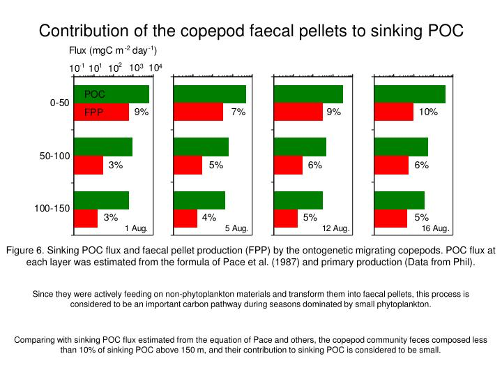 Contribution of the copepod faecal pellets to sinking POC