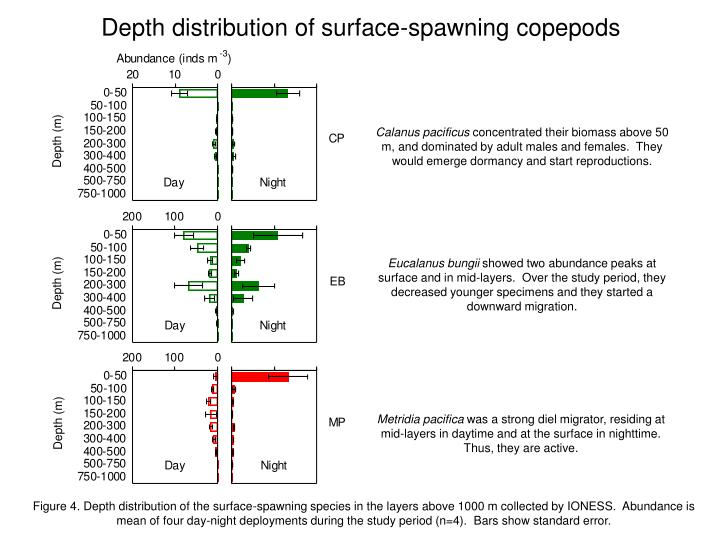 Depth distribution of surface spawning copepods