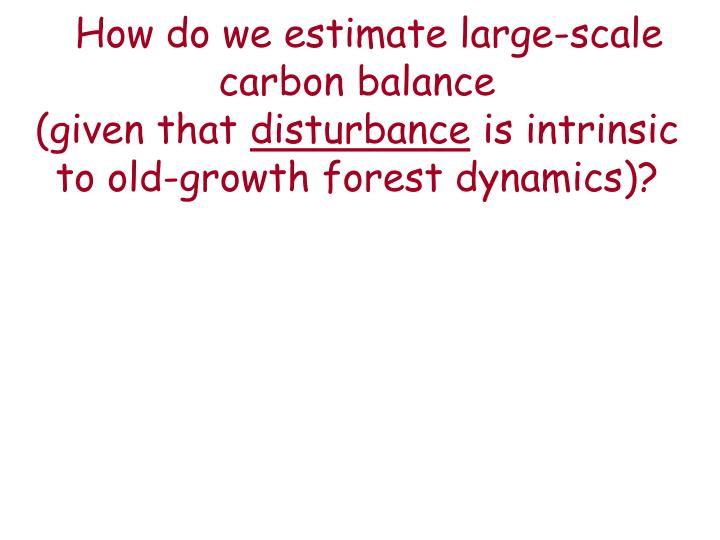 How do we estimate large-scale carbon balance
