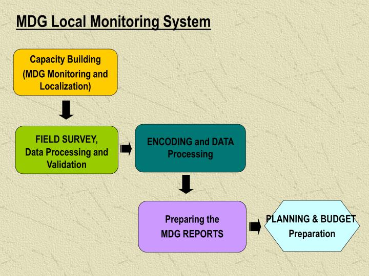 MDG Local Monitoring System