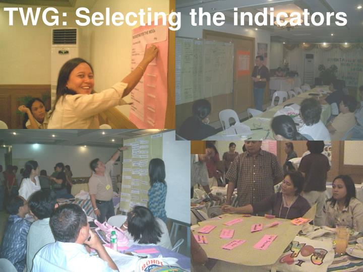 TWG: Selecting the indicators