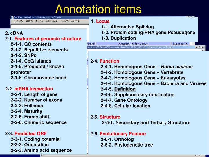 Annotation items