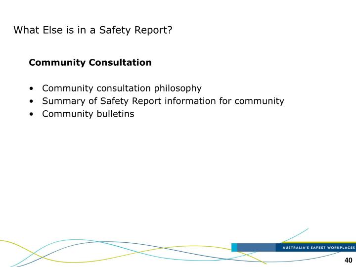 What Else is in a Safety Report?