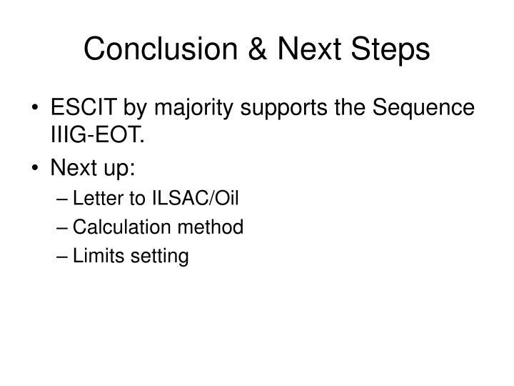 Conclusion & Next Steps