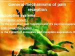 general mechanisms of pain reception