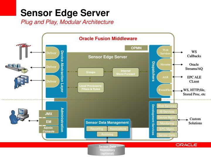 Sensor Edge Server