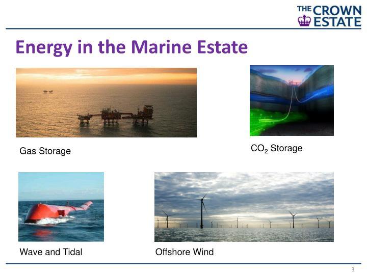 Energy in the Marine Estate
