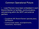 common operational picture