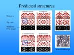 predicted structures