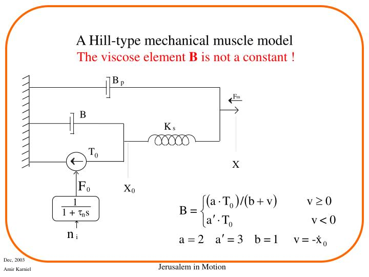 A Hill-type mechanical muscle model