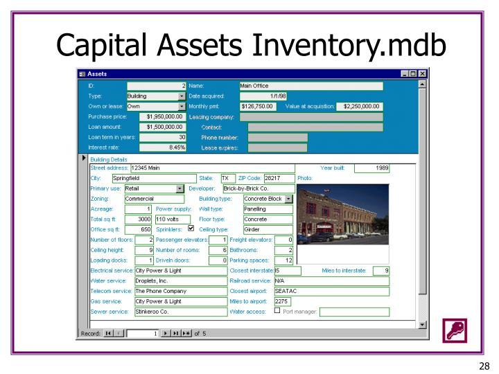 Capital Assets Inventory.mdb