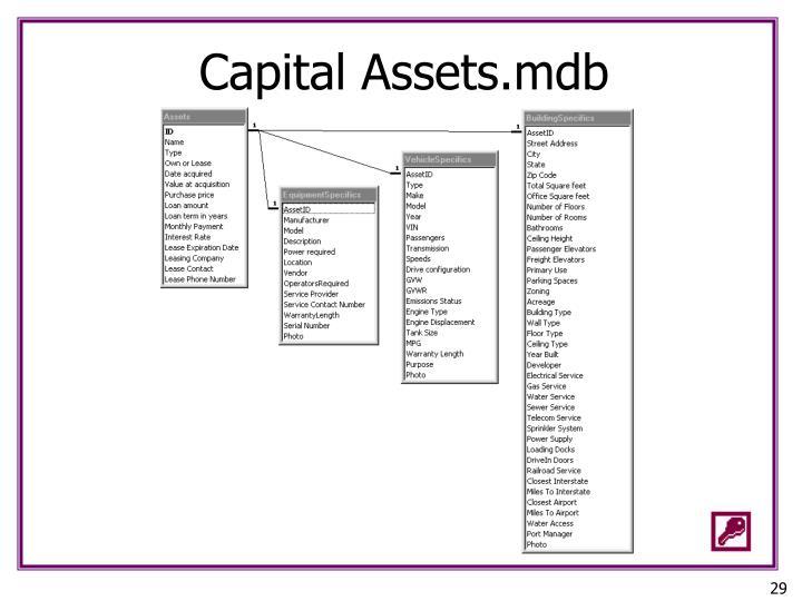Capital Assets.mdb