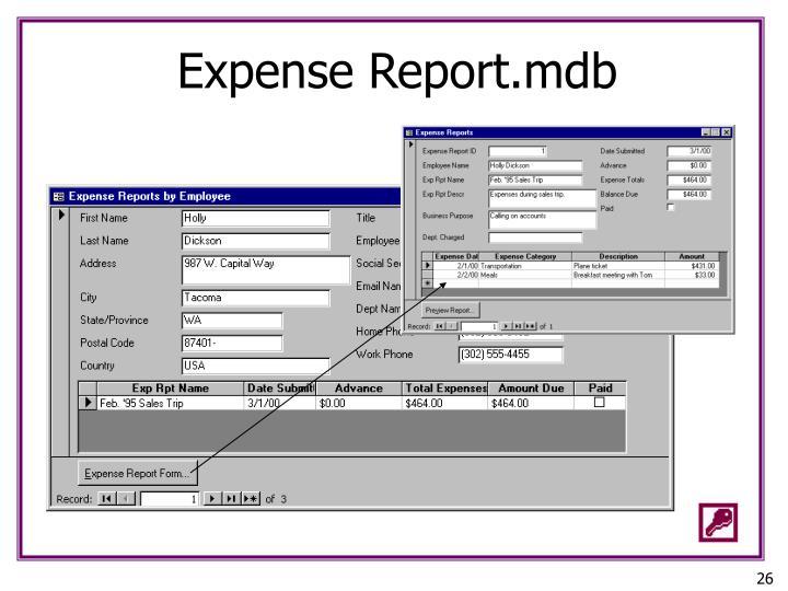Expense Report.mdb