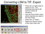 converting lsm to tif export